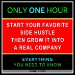 The First Steps to Starting Your New Business From Nothing Volume 2 Start Your Dream Business Now Even if You Are in Debt and Making Minimum Wage, Zane Rozzi