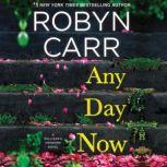 Any Day Now, Robyn Carr