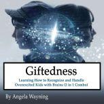 Giftedness: Learning How to Recognize and Handle Overexcited Kids with Brains (2 in 1 Combo), Angela Wayning
