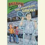 Ballpark Mysteries #2: The Pinstripe Ghost, David A. Kelly