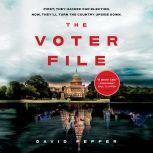 The Voter File, David Pepper