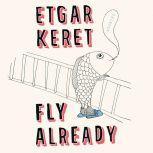 Fly Already Stories, Etgar Keret