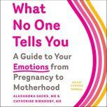What No One Tells You A Guide to Your Emotions from Pregnancy to Motherhood, Alexandra Sacks