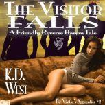 The Visitor Falls A Friendly Reverse Harem Tale