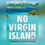 No Virgin Island A Sabrina Salter Mystery, C. Michele Dorsey
