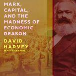 Marx, Capital, and the Madness of Economic Reason, David Harvey