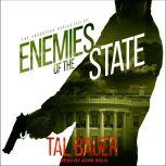 Enemies of the State, Tal Bauer