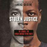 Stolen Justice: The Struggle for African American Voting Rights, Lawrence Goldstone