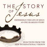 A NIV, Story of Jesusudio Download Experience the Life of Jesus as One Seamless Story, Michael Blain-Rozgay-Allison Moffett