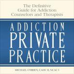 Addiction Private Practice The Definitive Guide for Addiction Counselors and Therapists, Michael O'Brien
