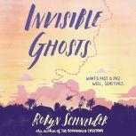Invisible Ghosts, Robyn Schneider