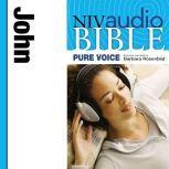 A NIVudio Bible, Pure Voice: Johnudio Download (Narrated by Barbara Rosenblat), Barbara Rosenblat