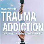 Trauma and Addiction Ending the Cycle of Pain Through Emotional Literacy, Tian Dayton