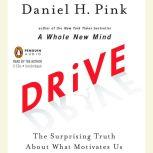 Drive The Surprising Truth About What Motivates Us, Daniel H. Pink