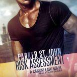 Risk Assessment A Cabrini Law Novel, Parker St. John