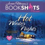 Hot Winter Nights A Bear Mountain Rescue Story, Codi Gary