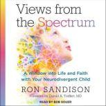 Views from the Spectrum A Window into Life and Faith with Your Neurodivergent Child, Ron Sandison
