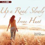 Up a Road Slowly, Irene Hunt