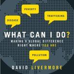 What Can I Do? Making a Global Difference Right Where You Are, David Livermore