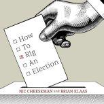 How to Rig an Election, Nic Cheeseman