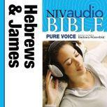 A NIVudio Bible, Pure Voice: Hebrews and Jamesudio Download (Narrated by Barbara Rosenblat), Barbara Rosenblat