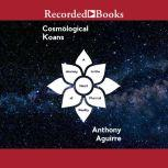 Cosmological Koans A Journey to the Heart of Physical Reality, Anthony Aguirre