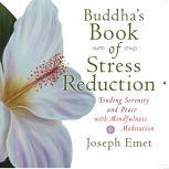 Buddha's Book of Stress Reduction Finding Serenity and Peace with Mindfulness Meditation, Joseph Emet