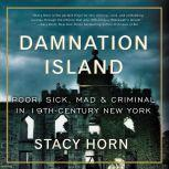 Damnation Island Poor, Sick, Mad, and Criminal in 19th-Century New York, Stacy Horn