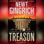 Treason, Newt Gingrich