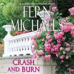 Crash and Burn, Fern Michaels