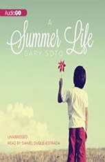 gary soto summer life essay analysis In вђњa summer life,вђќ soto brilliantly strings words and images together to form an almost ingenious personal narrative from the perspective of a six-year-old.