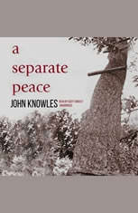 dealing with enemies in a separate peace by john knowles A separate peace teacher guide  where he killed his enemies: hatred  view a separate peace john knowles explained that he never wrote with any audience in.