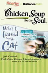 Chicken Soup for the Soul: What I Learned from the Cat - 30 Stories about Play, What's Important, and Belief