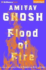 Flood of Fire - Audiobook Download