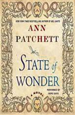 Ann patchett state of wonder summary