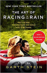 The Art of Racing in the Rain, Garth Stein