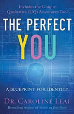 The Perfect You: A Blueprint For Identity - Audiobook Download