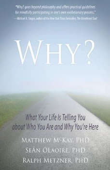 Why?: What Your Life Is Telling You about Who You Are and Why You're Here What Your Life Is Telling You about Who You Are and Why You're Here, Matthew McKay PhD