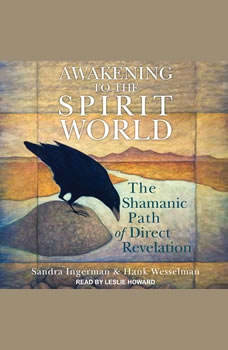 Awakening to the Spirit World: The Shamanic Path of Direct Revelation, Sandra Ingerman
