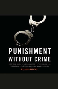 Punishment Without Crime: How Our Massive Misdemeanor System Traps the Innocent and Makes America More Unequal, Alexandra Natapoff