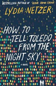 How to Tell Toledo from the Night Sky, Lydia Netzer