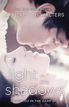 Light in the Shadows, A. Meredith Walters
