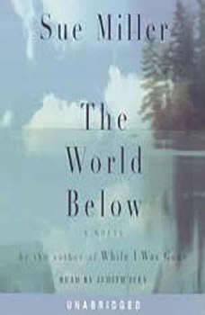 The World Below, Sue Miller