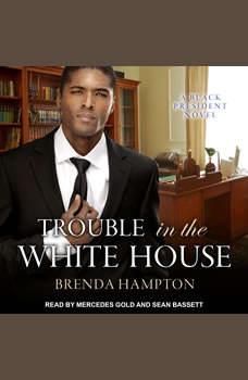 Trouble in the White House: A Black President Novel, Brenda Hampton