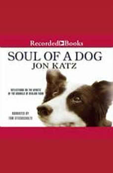 Soul of a Dog, Jon Katz