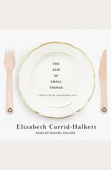 The Sum of Small Things: A Theory of the Aspirational Class, Elizabeth Currid-Halkett