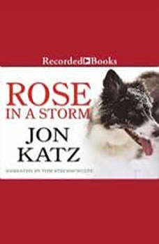 Rose in a Storm, Jon Katz