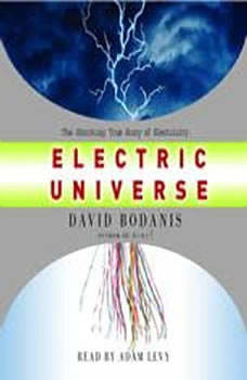 Electric Universe: How Electricity Switched on the Modern World, David Bodanis