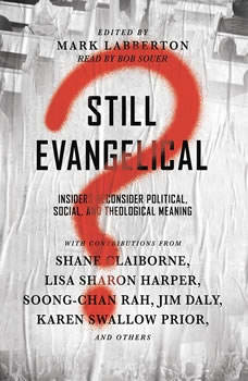 Still Evangelical?: Insiders Reconsider Political, Social, and Theological Meaning, Bob Souer