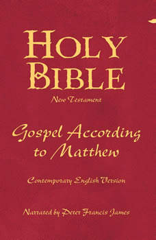 Holy Bible Gospel According To Matthew Volume 22, Various